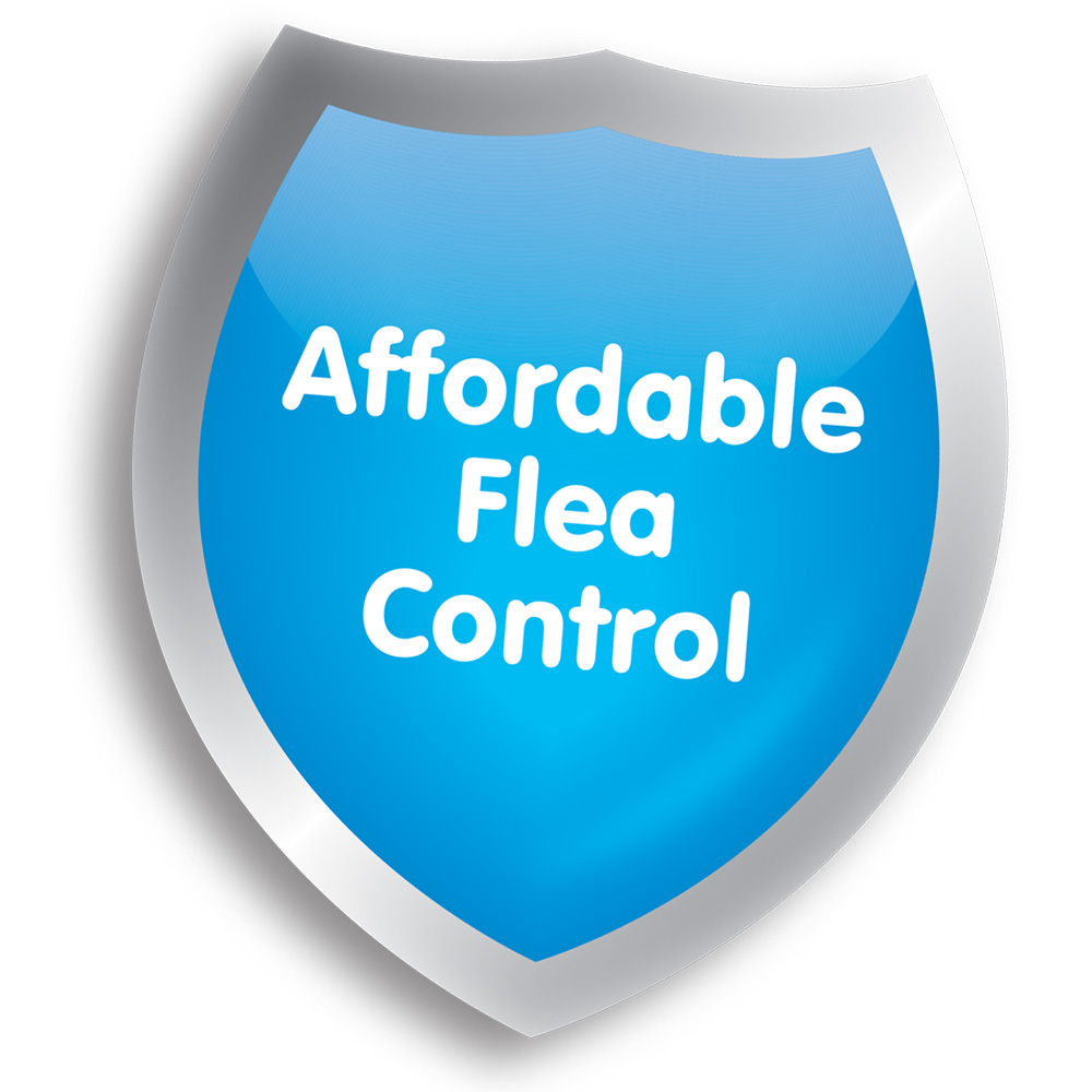 Beaphar FIPROtec affordable flea and tick treatment